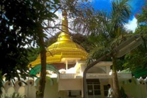 Dhamma Tapovana